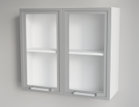 Clear Glass Vertical Double Door Silver Framed Wall Cabinet for